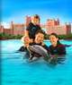 Bahamas 'Atlantis' at 60% Off Plus Dolphin Swim