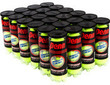 Penn Championship Extra Duty Tennis Balls, Case of 24