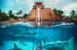 Atlantis - Early Bird Special: Book Early and Save on January - March Travel
