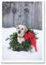 Palm Press Yellow Lab & Wreath Cards, 10-Pack