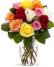 12 Rainbow Roses