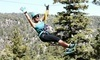 Action Zipline Tours Coupons Big Bear Lake, California Deals