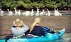 Calypso Kayaking Coupons Merritt Island, Florida Deals