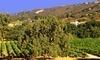 Galante Vineyards Tasting Room Coupons Carmel, California Deals