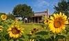 George Ranch Historical Park Coupons Richmond, Texas Deals