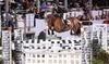 Devon Classic Horse Show and Country Fair Coupons Devon, Pennsylvania Deals