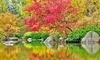 Anderson Japanese Gardens Coupons