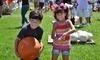 Coconut Grove Pumpkin Patch Festival Coupons