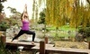 Yoga at Cindy's Coupons