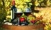 Cornucopia Wine Quest Coupons