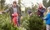 Santa & Mikey's Fresh Christmas Trees Coupons