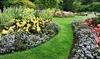 Southern Vistas Landscape & Garden Center Coupons