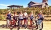 Pedego Wine Tours Coupons