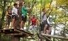 Orlando Tree Trek Adventure Park Coupons