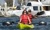 Chula Vista Kayak Coupons