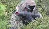Gorilla Tactics Laser Tag Coupons