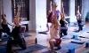 Yogamaya Yoga Studio Coupons