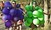 Wicked Wine Run - Monterey Coupons