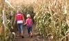 Sand Mountain Corn Maze Coupons