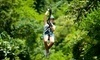 Highlands Aerial Park Coupons