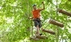 Treetop Trekking  Coupons