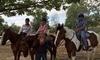 Simon Horsemanship LLC Coupons