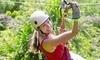 Zip Gatlinburg Tree Trek Adventures Coupons