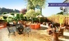 West Sonoma Inn & Spa Coupons