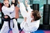 Hatfield's San Soo Kung Fu Coupons