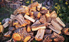 Four Seasons Firewood Coupons North Newton, Kansas Deals