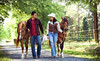 Douglas Lakeview Stables Coupons Sevierville, Tennessee Deals